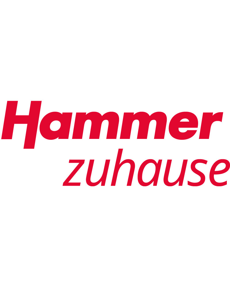 Hammer System Management GmbH